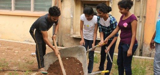 cleanup program @ forestry (2)