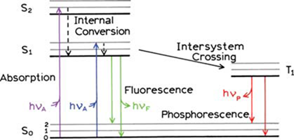 Thermo scientific lumina fluorescence spectrometer instrument one form of a jablonski diagram adapted from j r lakowicz principles of fluorescence spectroscopy 3rd ed springer 2006 ccuart Gallery