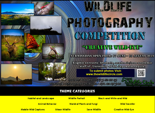 """Creative Wild-Eye"" Photography competition"