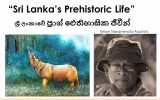 "Guest Talk on ""Sri Lanka's Prehistoric Life"""