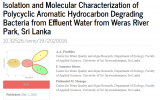 solation and Molecular Characterization of Polycyclic Aromatic Hydrocarbon Degrading Bacteria from Effluent Water from Weras River Park, Sri Lanka